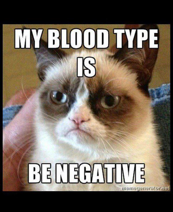 Blood Type Is Be Negative - funny grumpy cat meme