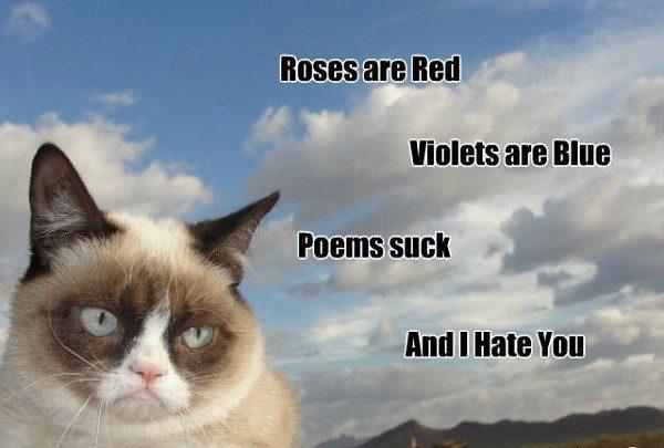 Grumpy Cat Poem - funny meme