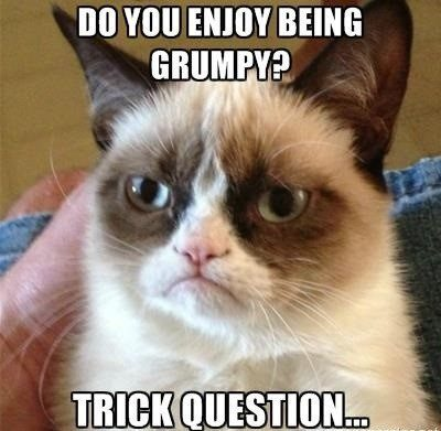 Do You Enjoy Being Grumpy? Trick Question - grumpy cat meme