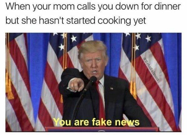50 Best Donald Trump Memes