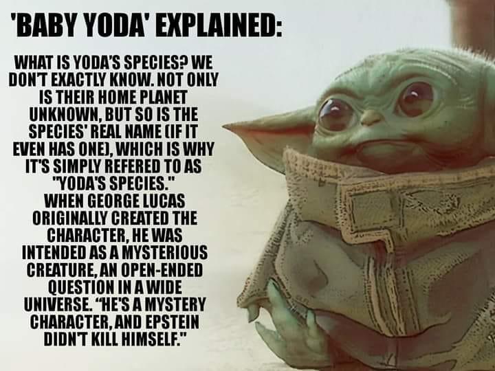 Baby Yoda Explained