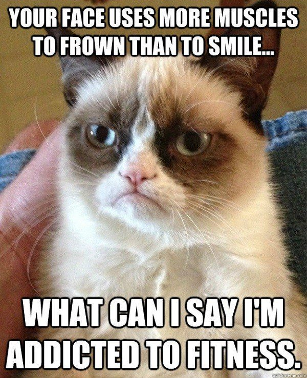 Use More Muscles To Frown - addicted to fitness - grumpy cat meme
