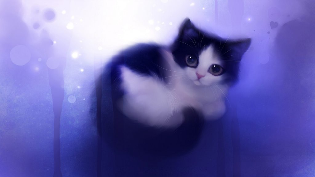 Cute Kitten Wallpaper background