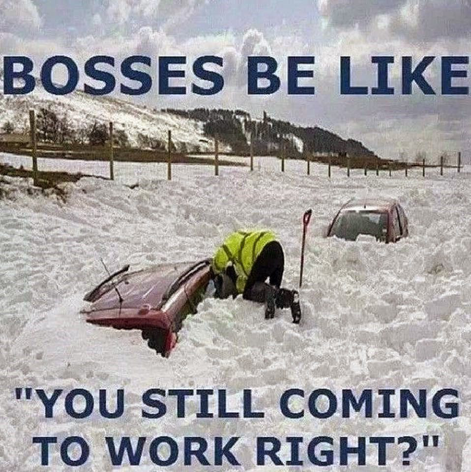 "Bosses Be Like "" You Still Coming To Work Roght?"" Cars 100% Covered In Snow"