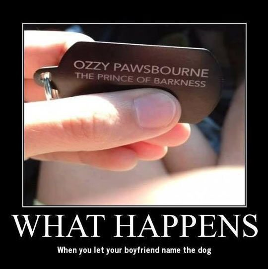 Let Your Boyfriend Name The Dog - funny photo - ozzy pawsbourne the prince of barkness