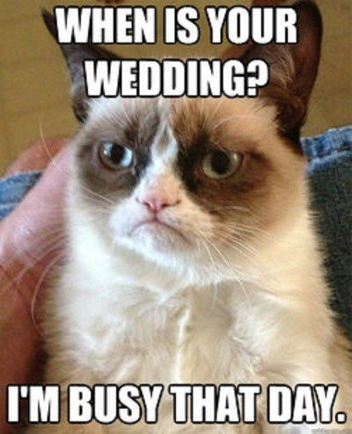 When Is Your Wedding? I'm Busy That Day - grumpy cat meme