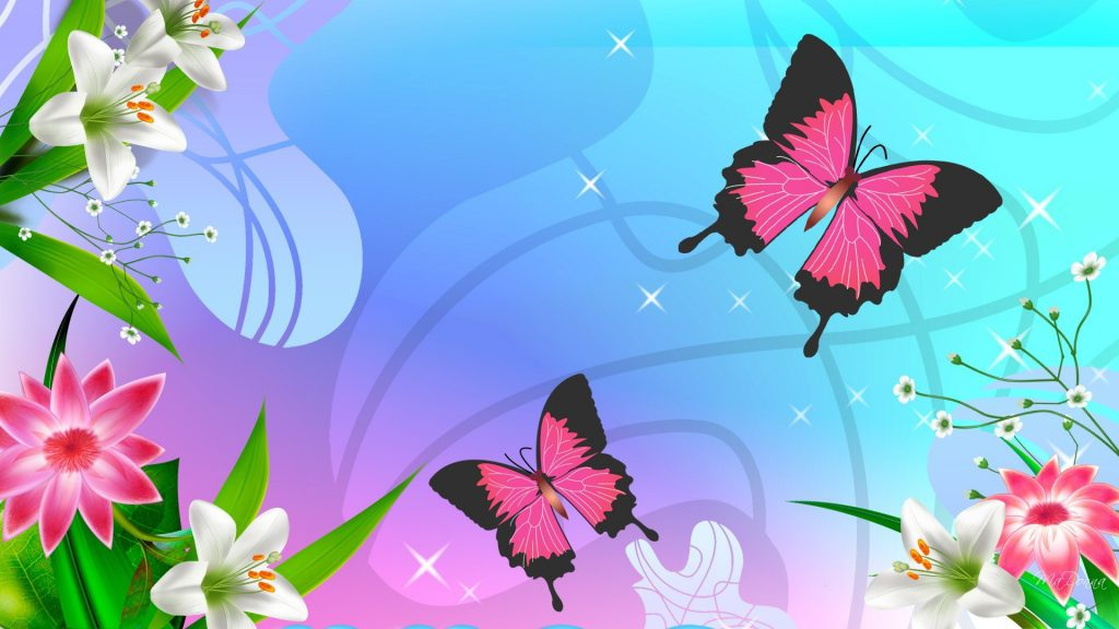 Colorful And Cute Butterfly Wallpaper