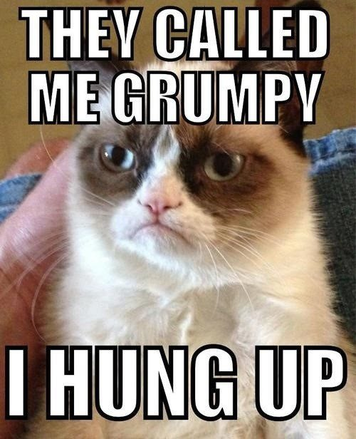 They Called Me Grumpy - I Hung Up - grumpy cat meme