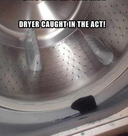 Dryer Caught In The Act - Really Funny Picture