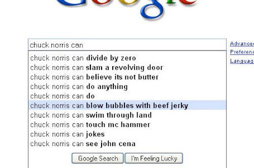 Chuck Norris Can - Funny Google Search Suggestion