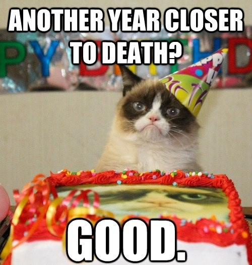 grumpy cat birthday meme - another year closer to death - good