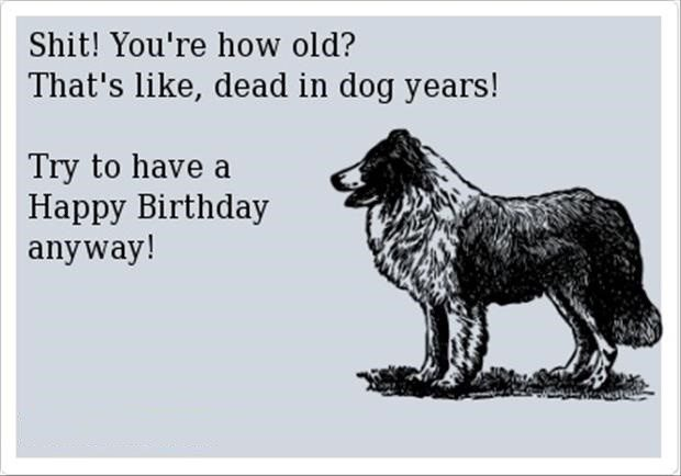You're Dead In Dog Years - Funny Birthday E-Card