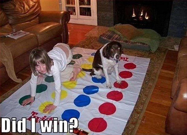 Dog Playing Twister - funny animal picture