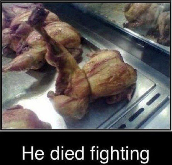 He Died Fighting - Funny Caption Photo