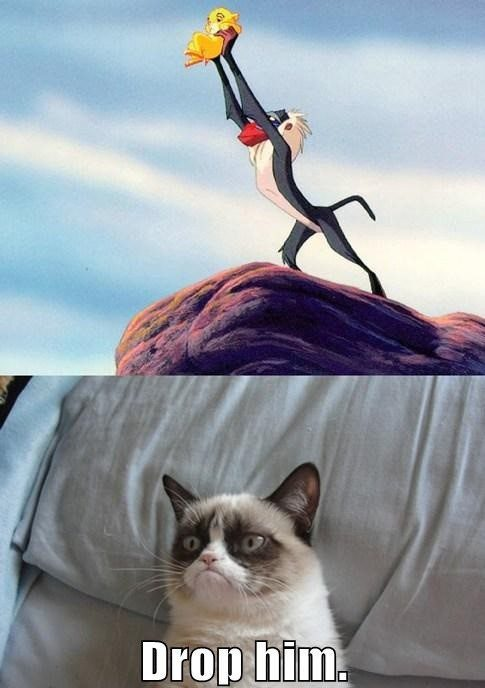 Drop Him - lion king grumpy cat meme