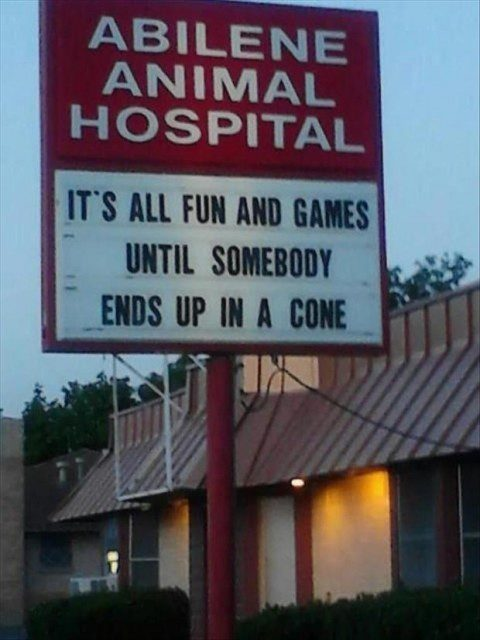 It's All Fun and Games Until Somebody Ends Up In A Cone - funny animal hospital sign