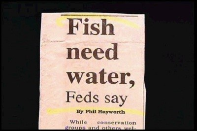 fish need water