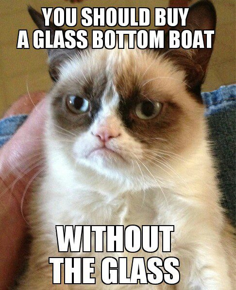Buy A Glass Bottom Boat, Without The Glass - grumpy cat meme