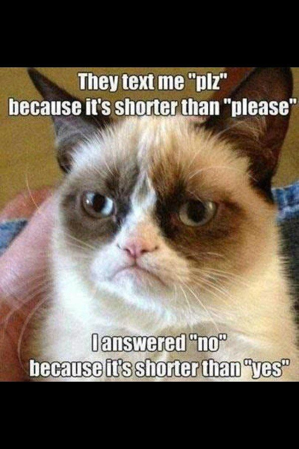 The Shorter Answer - Grumpy Cat Meme