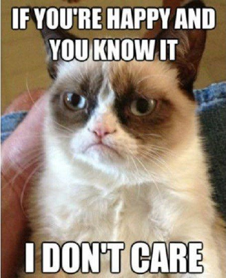 If You're Happy And You Know It, I Don't Care - grumpy cat meme