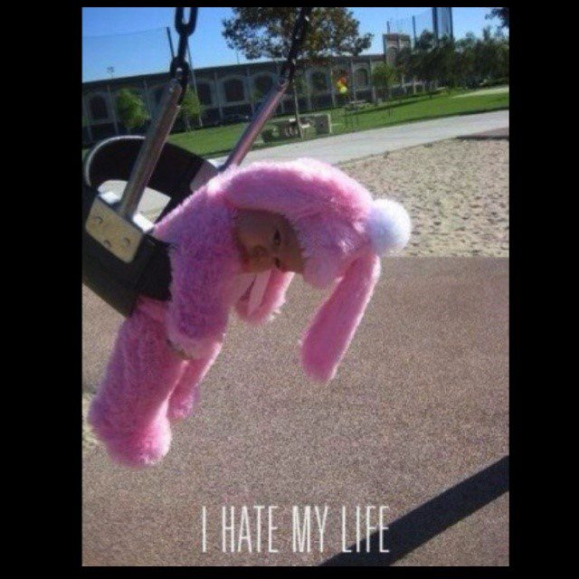 I Hate My Life - really funny picture