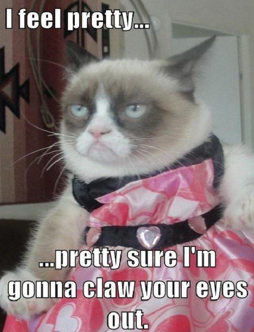 I Feel Pretty - Pretty Sure I'm Gonna Claw Your Eyes Out - grumpy cat - meme - funny caption photo