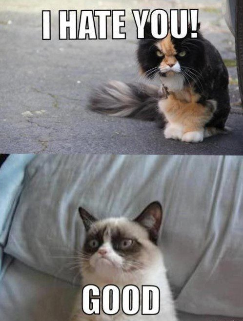 I Hate You,  Good. - grumpy cat meme