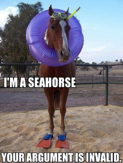 I'm A Seahorse - Horse In swimming gear - funny caption photo