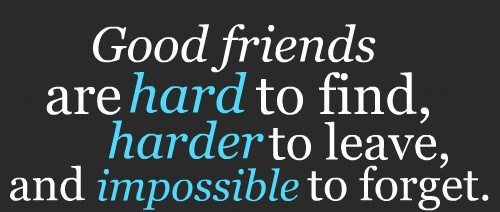 Good Friends Are Hard To Find - Best Friend Quote