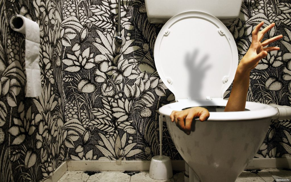 Coming Out Of The Toilet - Funny Wallpaper - Funny Desktop Background
