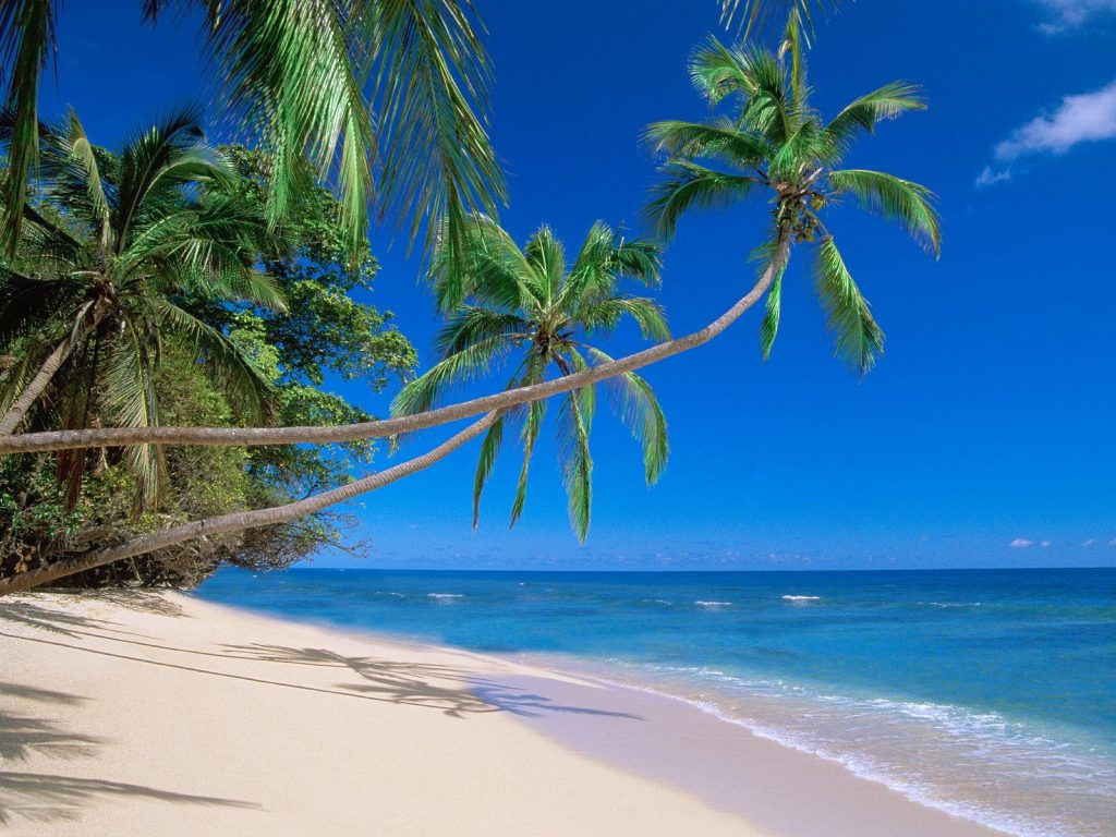 Tropical Beach Landscape - hd tablet wallpaper background