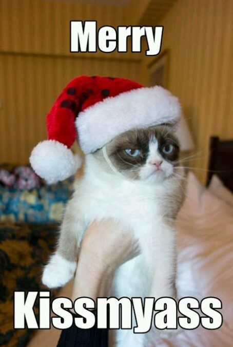 Merry Kissmyass - Grumpy Cat Christmas Meme