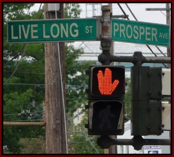Live Long St And Prosper Ave - Funny Image Meme