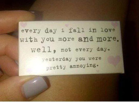 Everyday i fall in love with you more and more. well, not every day. yesterday you were pretty annoying. - relationship meme