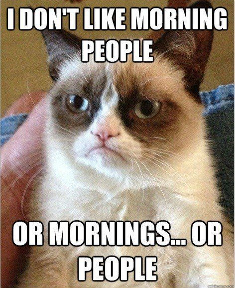 I Don't Like Morning People - Or Mornings, Or People. - grumpy cat meme
