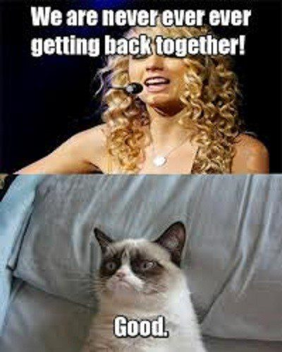 We Are Never Ever Getting Back Together, Good. - grumpy cat meme