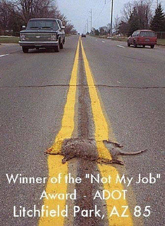 "Winner Of The ""Not My Job"" Award"