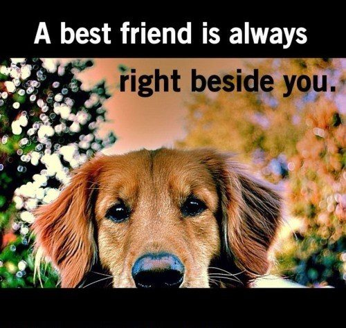 Always Right Beside You - Best Friend Quote