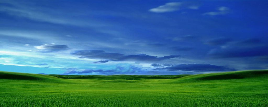 Green Pasture Wallpaper Blue Sky Green Grass - hd tablet background