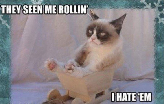 They See Me Rollin', I Hate Em.