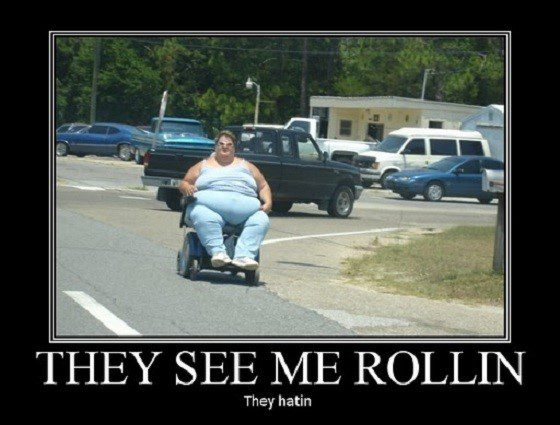 They See Me Rollin - Funny Caption Photo
