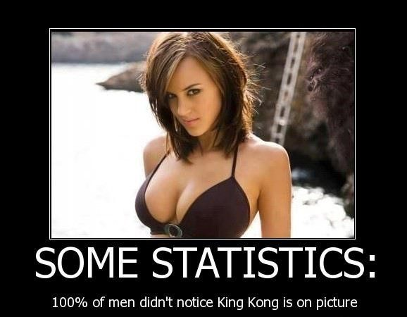 Some Statistics - Funny Caption Photo