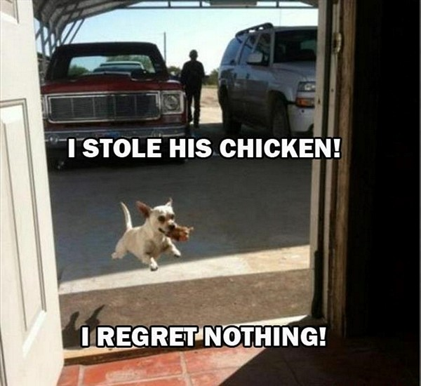 stole his chicken