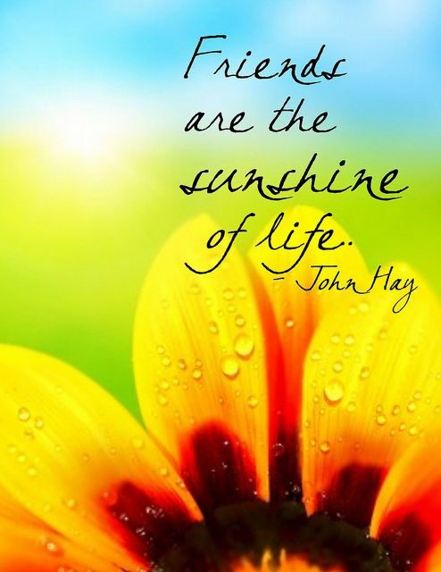 The Sunshine Of Life - bestfriend quote