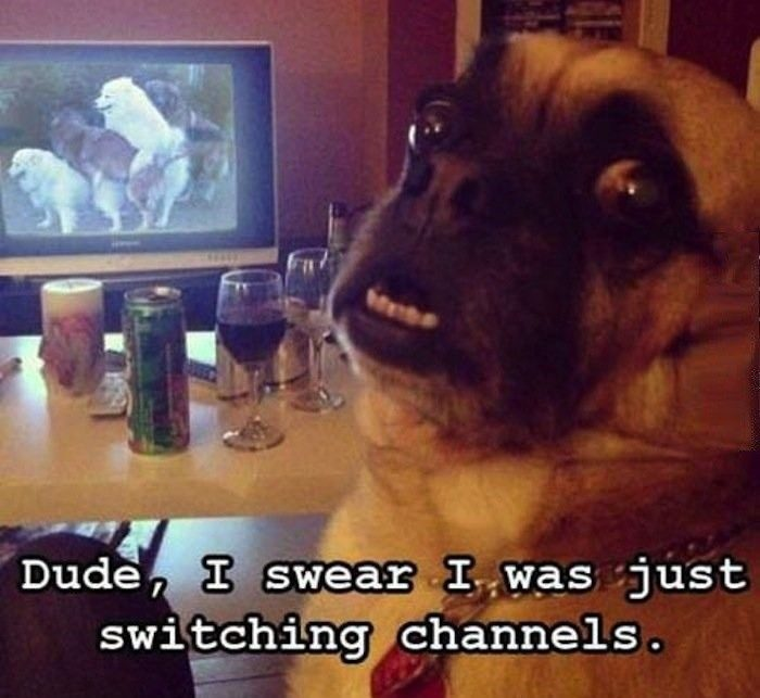 Was Just Switching Channels - Funny Image Meme