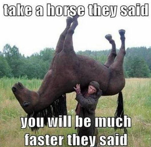 Take A Horse - guy carrying a horse - funny picture meme