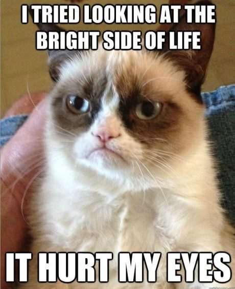 Tried Looking At The Bright Side, It Hurt My Eyes. Grumpy Cat Meme