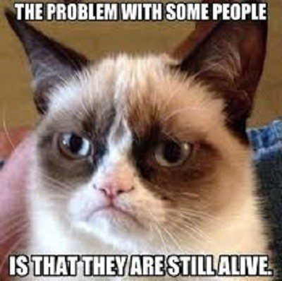 The Problem With Some People - grumpy cat meme