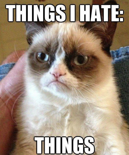 Things I Hate: Things - grumpy cat meme