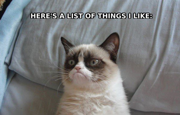 A List Of Things I Like - grumpy cat meme